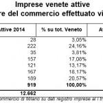 Veneto E-commerce: Boom Di Imprese