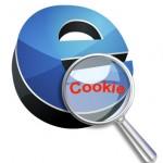 Istruzioni Come Fare Adeguamento Cookie Normativa